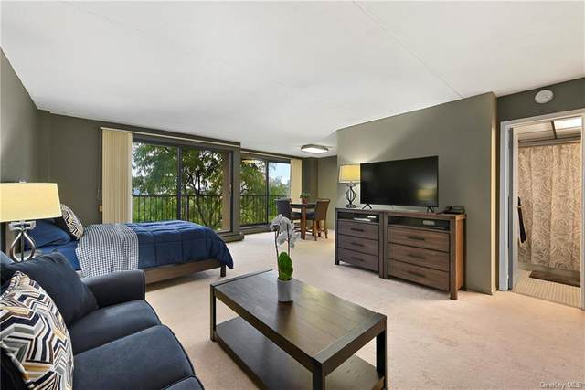 150 Overlook Avenue 7H, Peekskill, NY 10566 (MLS #H6073026) :: Cronin & Company Real Estate