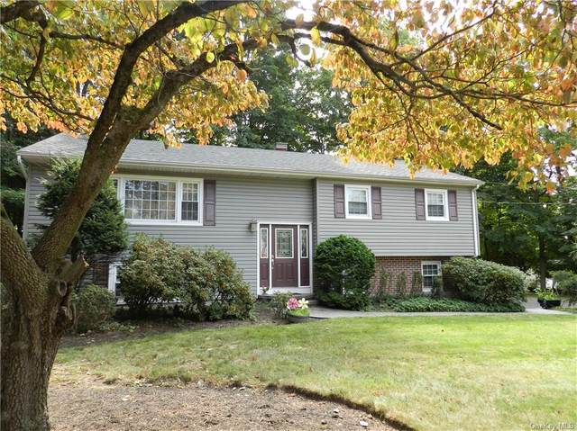 6 Linda Lane, Pearl River, NY 10965 (MLS #H6073079) :: William Raveis Baer & McIntosh