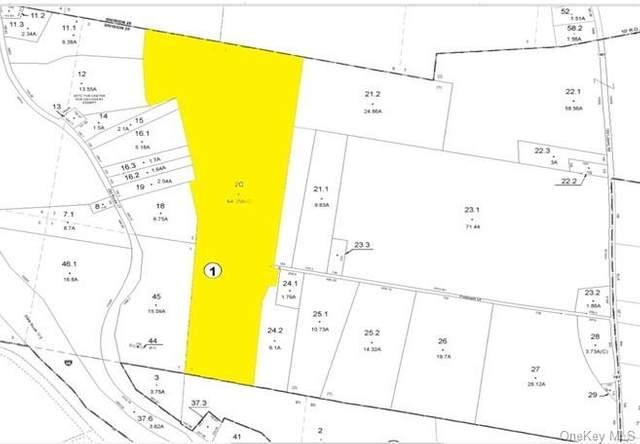 Pittaluga Drive, Monticello, NY 12701 (MLS #H6073081) :: Cronin & Company Real Estate
