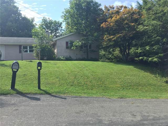 25 High View, Rock Hill, NY 12775 (MLS #H6073146) :: William Raveis Baer & McIntosh