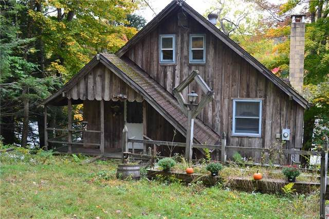 72 Lake Muskoday Road, Roscoe, NY 12736 (MLS #H6073152) :: Frank Schiavone with William Raveis Real Estate