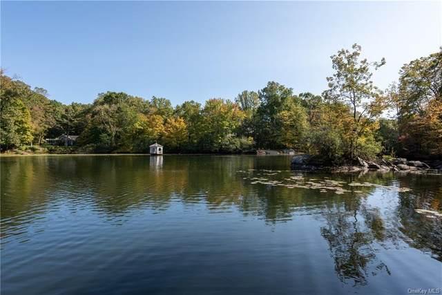 22 Pond Lane, Armonk, NY 10504 (MLS #H6073235) :: Nicole Burke, MBA | Charles Rutenberg Realty
