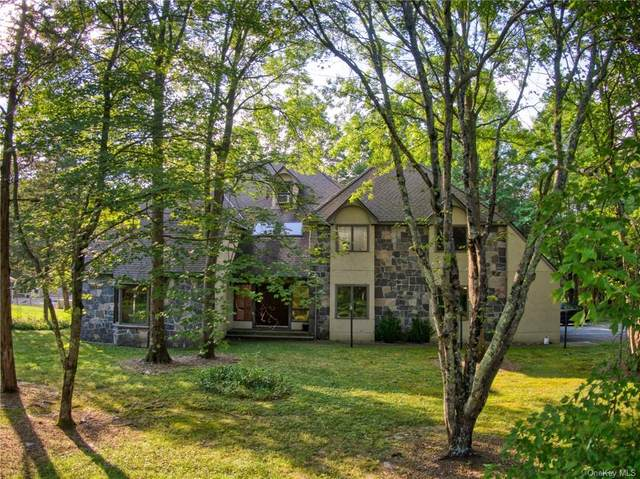 200 Bruynswick Road, New Paltz, NY 12561 (MLS #H6073273) :: Cronin & Company Real Estate