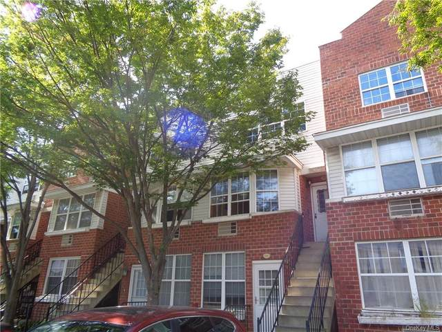 151 Sunset Boulevard #10151, Bronx, NY 10473 (MLS #H6073313) :: Mark Seiden Real Estate Team