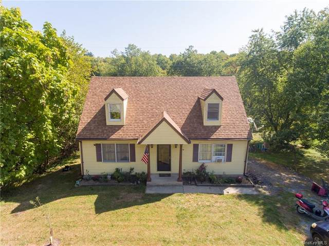 24 Hidden View Drive, Walden, NY 12586 (MLS #H6073332) :: Frank Schiavone with William Raveis Real Estate