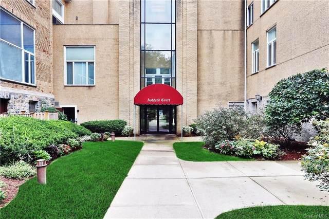 520 Ashford Avenue #28, Ardsley, NY 10502 (MLS #H6073351) :: Nicole Burke, MBA | Charles Rutenberg Realty