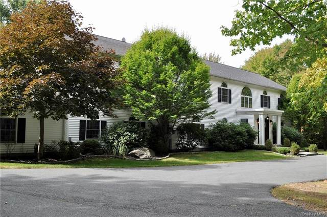400 Old Sackett Road, Rock Hill, NY 12775 (MLS #H6073392) :: Cronin & Company Real Estate