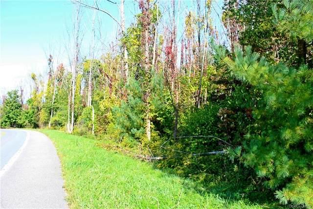 Lot 23 Granite Road, Kerhonkson, NY 12446 (MLS #H6073415) :: William Raveis Baer & McIntosh