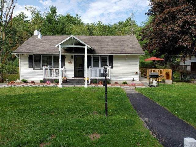 6 Willow Lane, Monticello, NY 12701 (MLS #H6073426) :: Cronin & Company Real Estate
