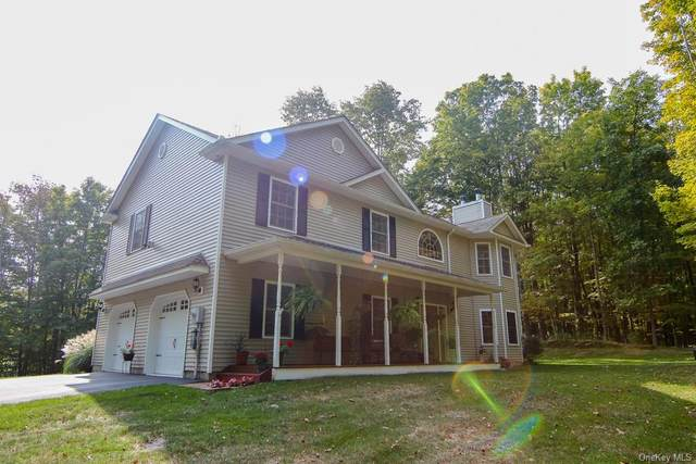 246 Tally Ho Road, Middletown, NY 10940 (MLS #H6073447) :: Cronin & Company Real Estate