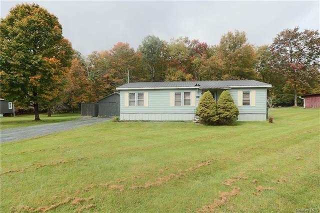 35 Back Shandelee Road, Livingston Manor, NY 12758 (MLS #H6073486) :: Nicole Burke, MBA | Charles Rutenberg Realty