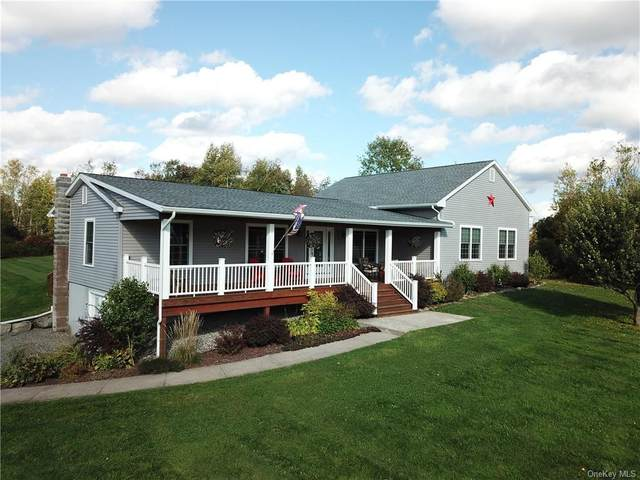461 Brown Settlement Road, Livingston Manor, NY 12758 (MLS #H6073621) :: Nicole Burke, MBA | Charles Rutenberg Realty