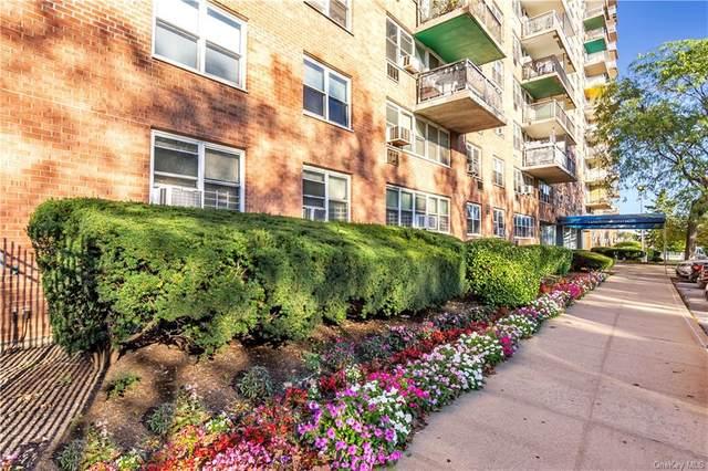 880 Boynton Avenue 19M, Bronx, NY 10473 (MLS #H6073681) :: Mark Seiden Real Estate Team