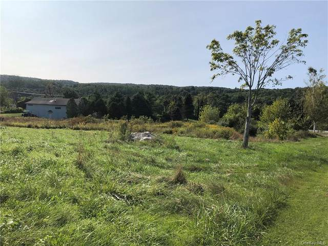 24 Longview Drive, Patterson, NY 12563 (MLS #H6073709) :: Frank Schiavone with William Raveis Real Estate