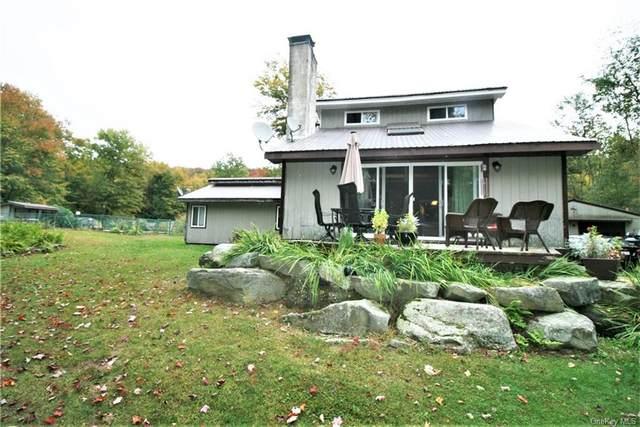 376 Bethlehem Road, Callicoon Center, NY 12724 (MLS #H6073782) :: Cronin & Company Real Estate