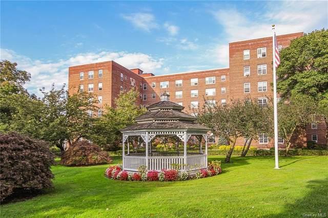 210 Pelham Road 6K, New Rochelle, NY 10805 (MLS #H6073911) :: McAteer & Will Estates | Keller Williams Real Estate