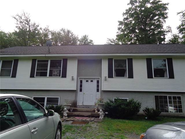 32 Cooper Road, Monticello, NY 12701 (MLS #H6073915) :: Cronin & Company Real Estate