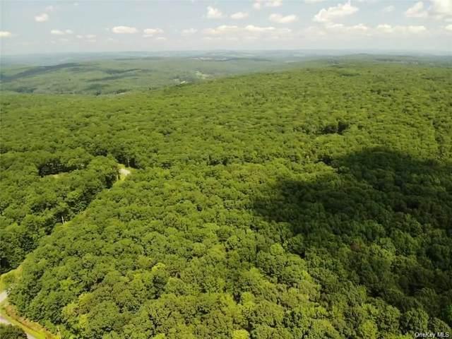 37 Trillium Trail, Cochecton, NY 12726 (MLS #H6073926) :: Frank Schiavone with William Raveis Real Estate