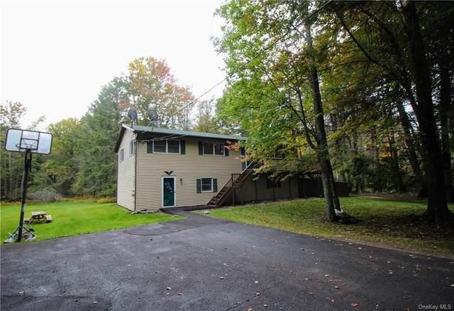 135 Lucky Lake Drive, Rock Hill, NY 12775 (MLS #H6073971) :: Cronin & Company Real Estate