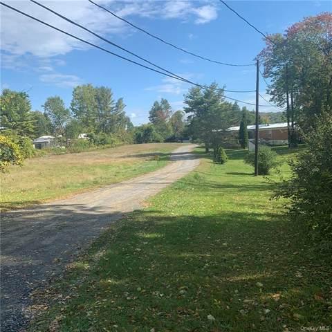 48 Gobblers Knob Road, Pawling, NY 12564 (MLS #H6073998) :: William Raveis Baer & McIntosh