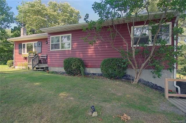 253 Benson Hill Road, Dover Plains, NY 12522 (MLS #H6074342) :: Kendall Group Real Estate | Keller Williams