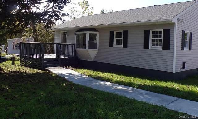 17 Clearview Road, Wingdale, NY 12594 (MLS #H6074484) :: William Raveis Baer & McIntosh