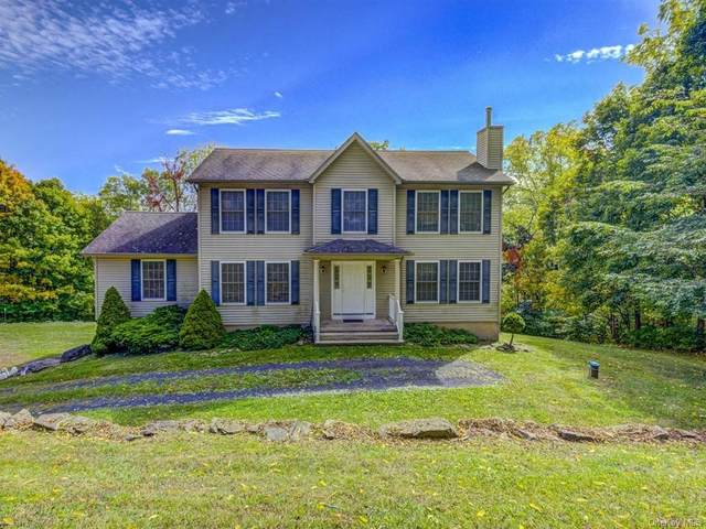 1094 Mountain Road, Port Jervis, NY 12771 (MLS #H6074568) :: Kendall Group Real Estate | Keller Williams