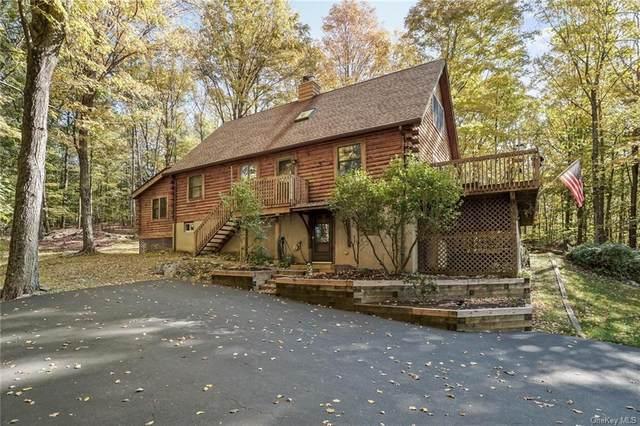 14 Birch Road, Putnam Valley, NY 10579 (MLS #H6074571) :: Nicole Burke, MBA | Charles Rutenberg Realty