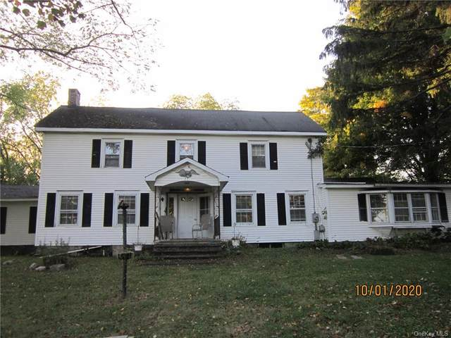9 Alice Court, Pine Bush, NY 12566 (MLS #H6074787) :: William Raveis Baer & McIntosh
