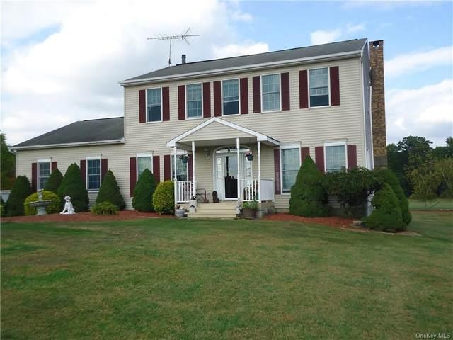 170 Long Lane, Wallkill, NY 12589 (MLS #H6074867) :: Nicole Burke, MBA | Charles Rutenberg Realty