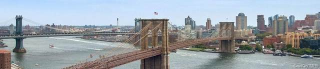 333 Pearl Street 26H, Newyork, NY 10038 (MLS #H6074869) :: McAteer & Will Estates | Keller Williams Real Estate