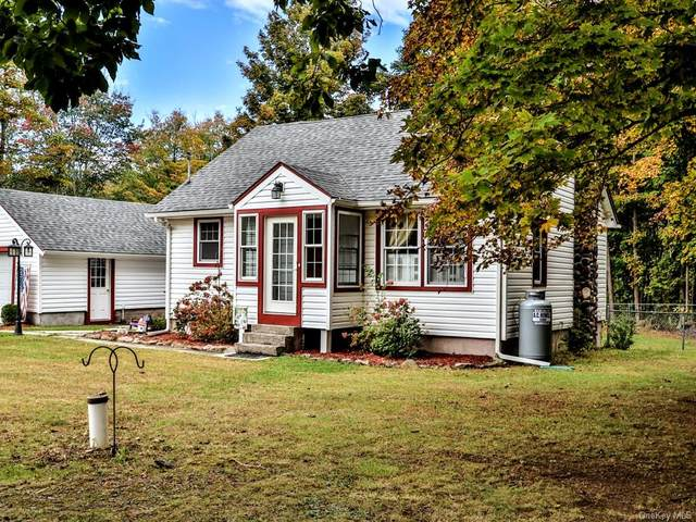 425 Tally Ho Road, Middletown, NY 10940 (MLS #H6074893) :: Frank Schiavone with William Raveis Real Estate
