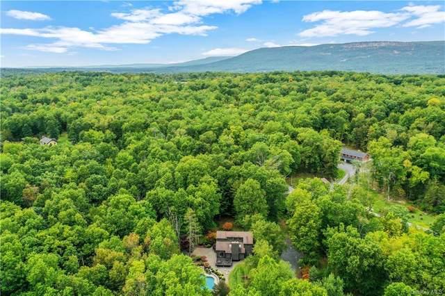 84 Crispell Lane, New Paltz, NY 12525 (MLS #H6075039) :: Frank Schiavone with William Raveis Real Estate