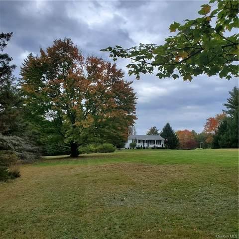 92 Ogden Road, Glen Spey, NY 12737 (MLS #H6075084) :: Kendall Group Real Estate | Keller Williams