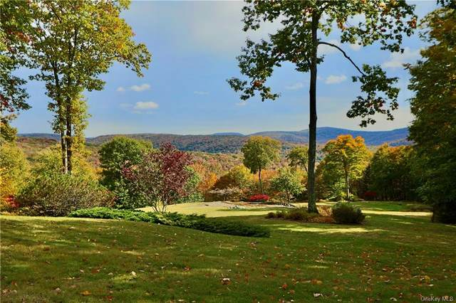 174 Mary Smith Hill Road, Livingston Manor, NY 12758 (MLS #H6075087) :: Nicole Burke, MBA | Charles Rutenberg Realty