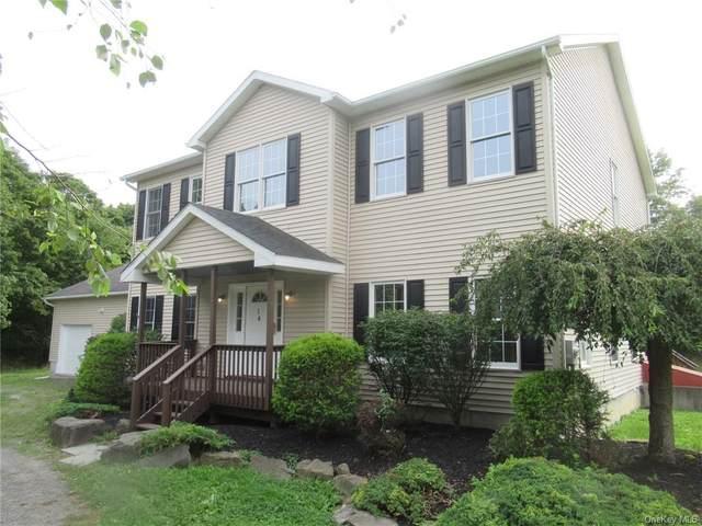 14 Stoley Lane, Saugerties, NY 12453 (MLS #H6075113) :: McAteer & Will Estates | Keller Williams Real Estate