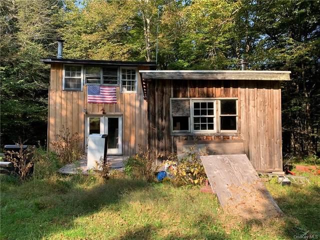 395 Cox Road, Roscoe, NY 12776 (MLS #H6075183) :: McAteer & Will Estates | Keller Williams Real Estate