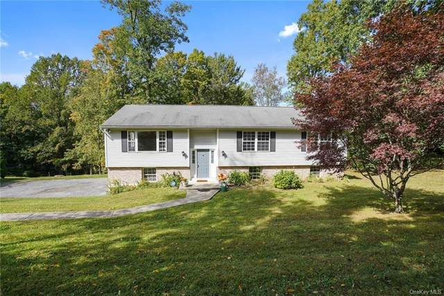 63 Brothers Road, Poughquag, NY 12570 (MLS #H6075248) :: Kendall Group Real Estate | Keller Williams