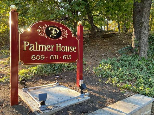 615 Palmer Road #401, Yonkers, NY 10701 (MLS #H6075249) :: McAteer & Will Estates | Keller Williams Real Estate