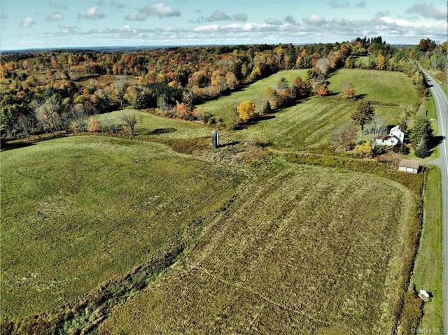 2715 State Route 17B, Cochecton, NY 12726 (MLS #H6075267) :: William Raveis Baer & McIntosh