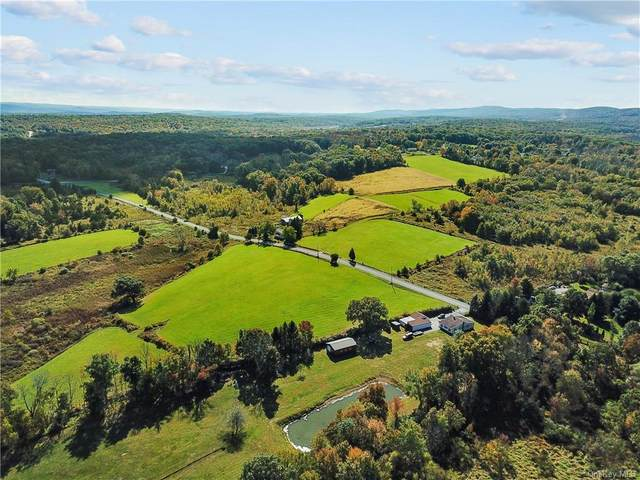 441 Eatontown Road, Port Jervis, NY 12771 (MLS #H6075279) :: Kendall Group Real Estate | Keller Williams