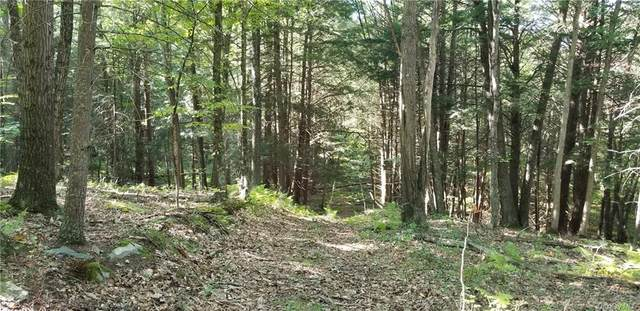 Lot 83 Cushetunk Drive, Cochecton, NY 12726 (MLS #H6075396) :: William Raveis Baer & McIntosh