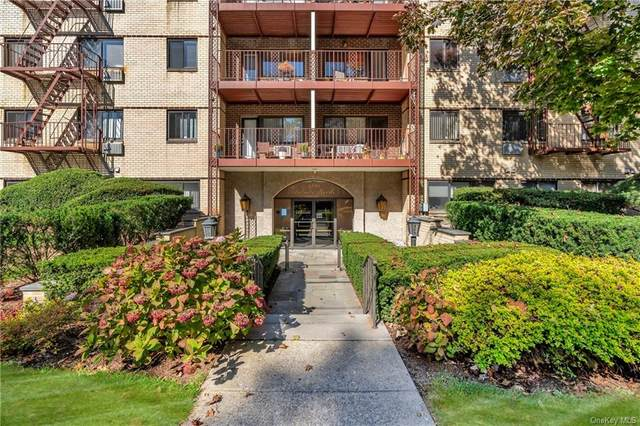 2201 Palmer Avenue 2N, New Rochelle, NY 10801 (MLS #H6075432) :: McAteer & Will Estates | Keller Williams Real Estate