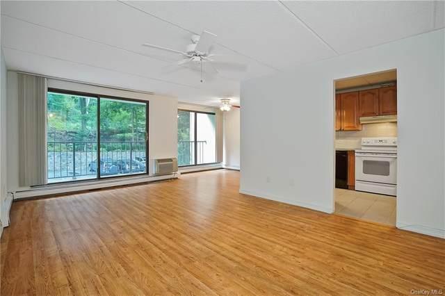 1 David Lane 2D, Yonkers, NY 10701 (MLS #H6075705) :: William Raveis Baer & McIntosh
