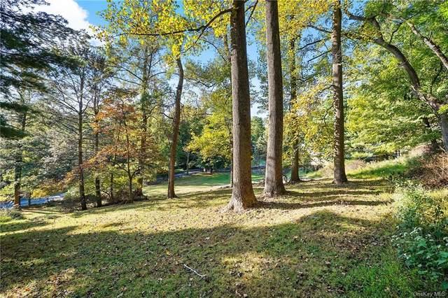 367 Mountain Road, Irvington, NY 10533 (MLS #H6075729) :: Mark Seiden Real Estate Team