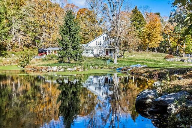 169 Dean Road, Stormville, NY 12582 (MLS #H6075732) :: RE/MAX RoNIN