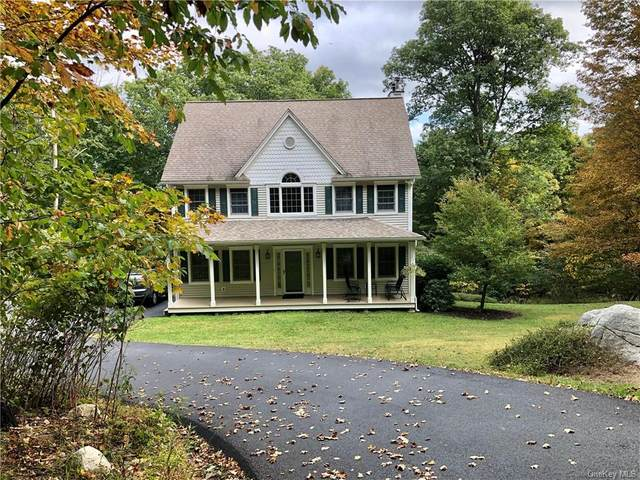 61 Shawanga Lodge Road, Bloomingburg, NY 12721 (MLS #H6075739) :: Kendall Group Real Estate | Keller Williams