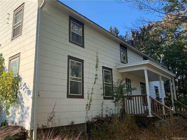 350 Burlingham Road, Pine Bush, NY 12566 (MLS #H6075742) :: William Raveis Baer & McIntosh