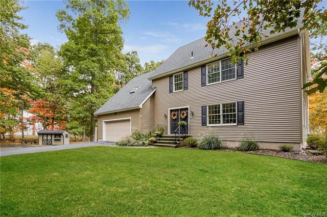47 Patrick Drive, Lagrangeville, NY 12540 (MLS #H6075901) :: Kendall Group Real Estate | Keller Williams