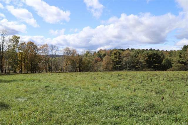 Lot 3 Laird Road, Bethel, NY 12720 (MLS #H6076125) :: William Raveis Baer & McIntosh